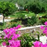 Garden view from 1st floor-