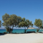 Kastraki beach in NAXOS just 350m from the property